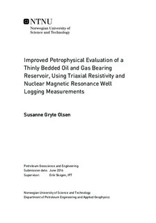 Improved Petrophysical Evaluation of a Thinly Bedded Oil and Gas