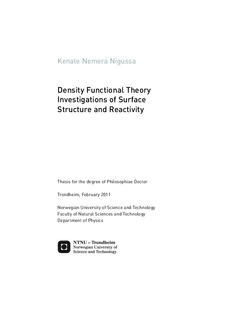 Density Functional Theory Investigations of Surface Structure
