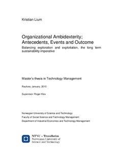 master thesis ambidexterity